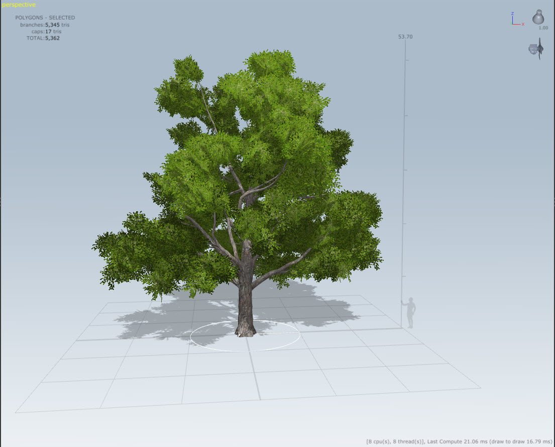 Conifer and other tree variations with Speed Tree for After